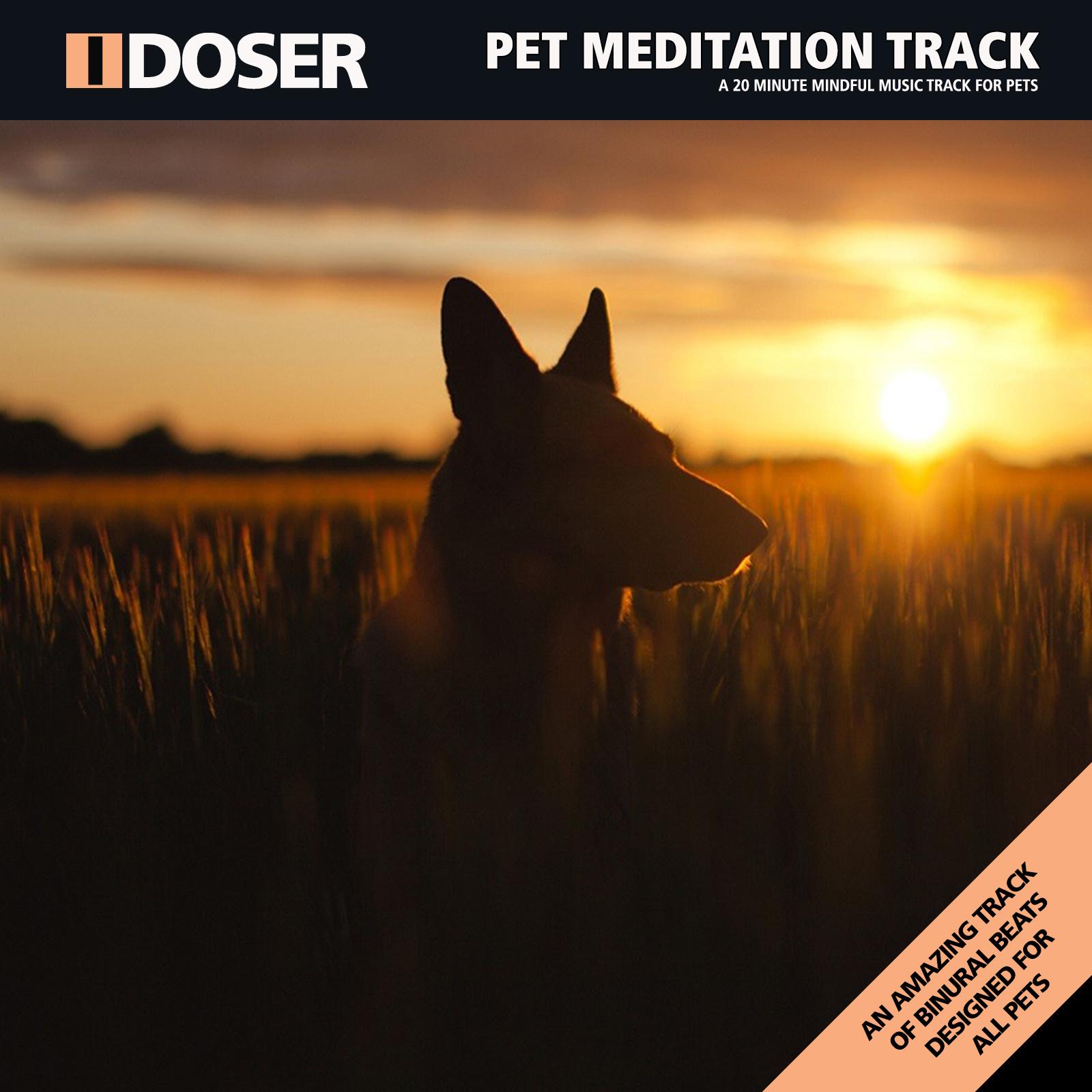 Instant Download MP3s : I-Doser Audio, Brainwave Doses